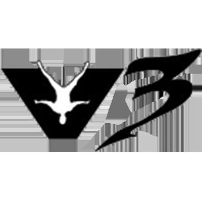v3.png
